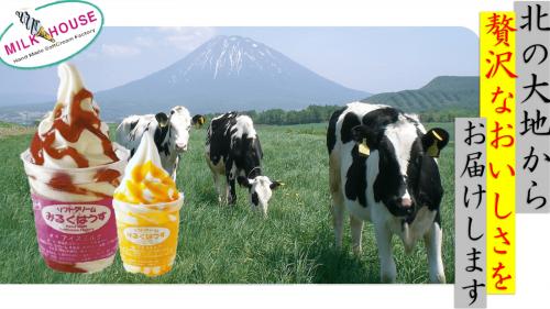 北海道から出来立てのソフトクリームをあなたの元へ 濃厚で贅沢な美味しさをお届け