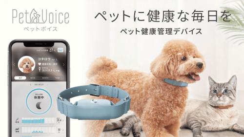 【PetVoice】ペットの健康をテクノロジーと獣医師で見守る 健康管理デバイス