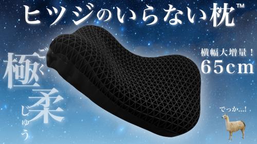 【最新作】ぷにょんと密着!声がもれるほどの柔らかさ&ビッグサイズで快適スッキリ枕
