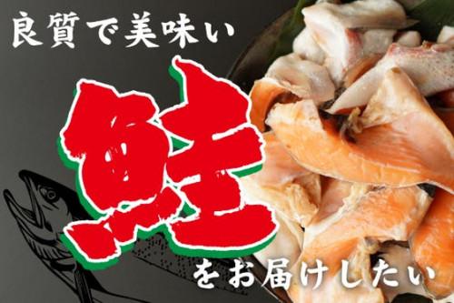 良質な脂がたっぷり!美味しい鮭をたくさんの人に食べてもらいたい!