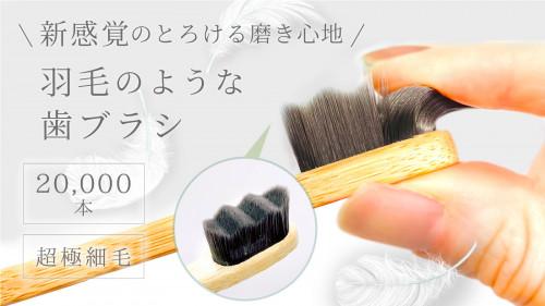まるで羽毛!?2万本の超極細毛で360°磨けるとろける新感覚の天然竹歯ブラシ