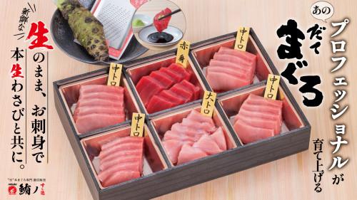 プロフェッショナルたちが育て上げる愛媛県産「だてまぐろ」を、本生わさびで味わう!